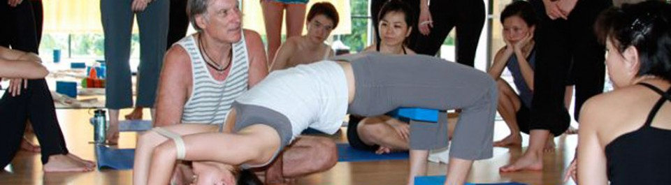 Michel Besnard is an experienced registered Yoga teacher (E-RYT) at the 500 hour level